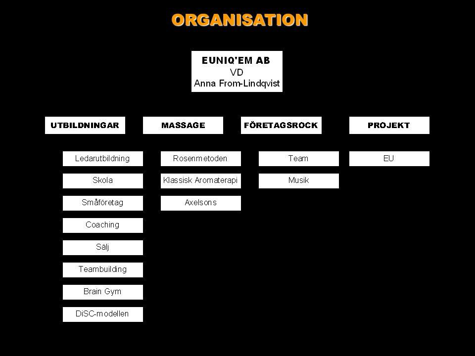 DiSC-modellen Handlar om • Mänsklig Insikt - Självinsikt • Rekrytering och Coaching • Innovation och Teambuilding • Stress och Livskvalitet • Diversity & Networking • Organisatorisk Klimatmätning • Personlig Effektivitet