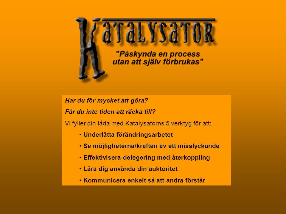 Kommande projekt Under 2004 planerar EUNIQ'EM i samarbete med kulturföreningen Nybyggarnas Barn att starta en förstudie för kulturprojektet Folkmusik i Skellefteå .