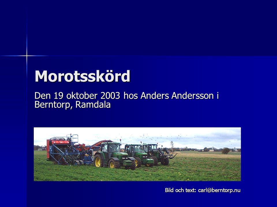 Morotsskörd Den 19 oktober 2003 hos Anders Andersson i Berntorp, Ramdala Bild och text: carl@berntorp.nu