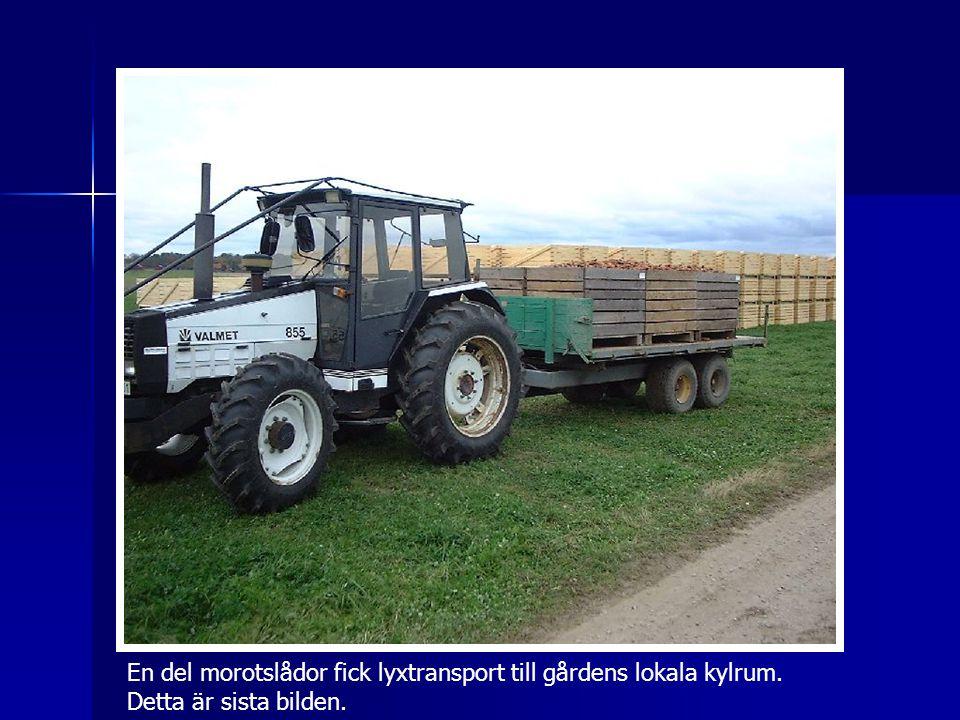 En del morotslådor fick lyxtransport till gårdens lokala kylrum. Detta är sista bilden.