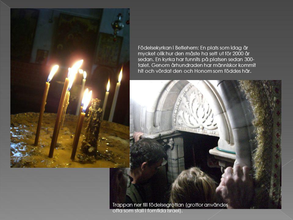 Trappan ner till födelsegrottan (grottor användes ofta som stall i forntida Israel). Födelsekyrkan i Betlehem: En plats som idag är mycket olik hur de
