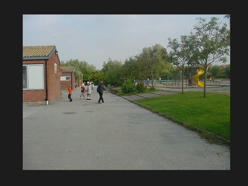 På den nybyggda skolbyggnaden gröna tak solfångare och modern ekoteknik