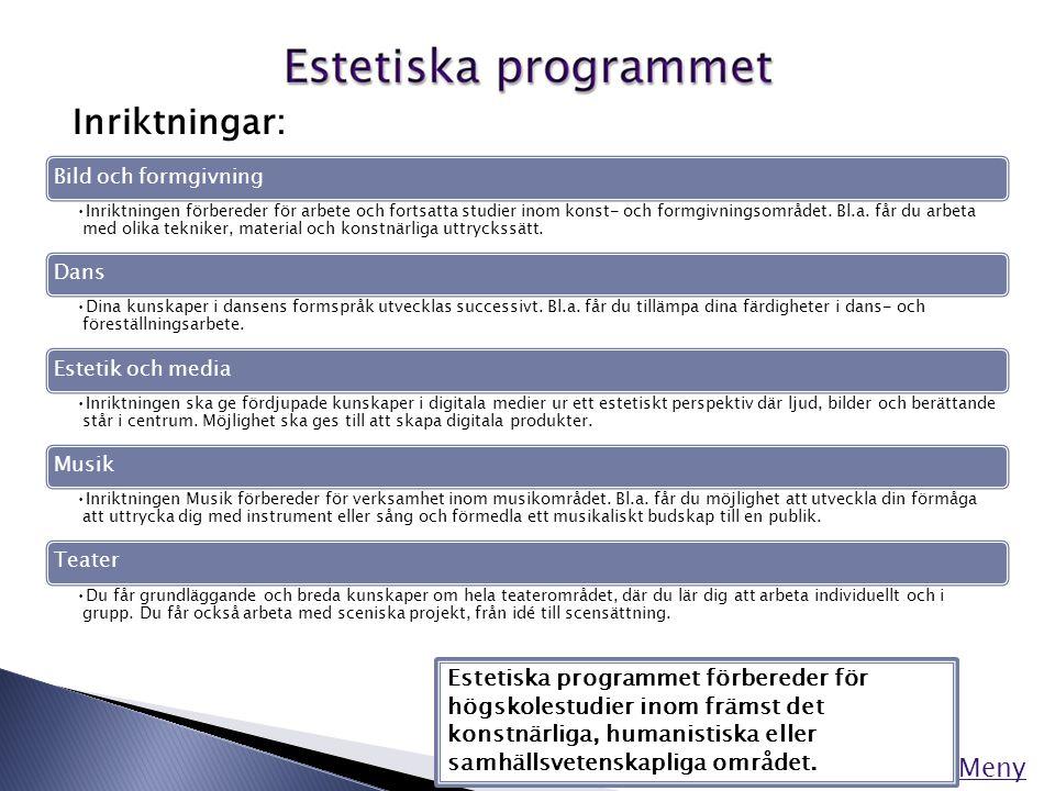 Meny Inriktningar: Estetiska programmet förbereder för högskolestudier inom främst det konstnärliga, humanistiska eller samhällsvetenskapliga området.