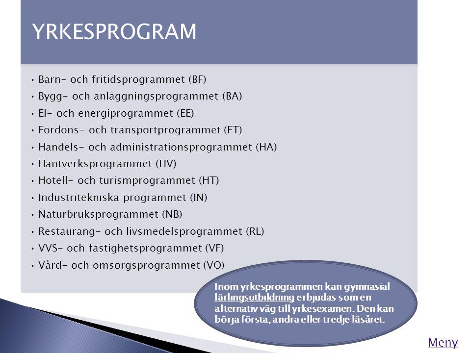 YRKESPROGRAM •Barn- och fritidsprogrammet (BF) •Bygg- och anläggningsprogrammet (BA) •El- och energiprogrammet (EE) •Fordons- och transportprogrammet