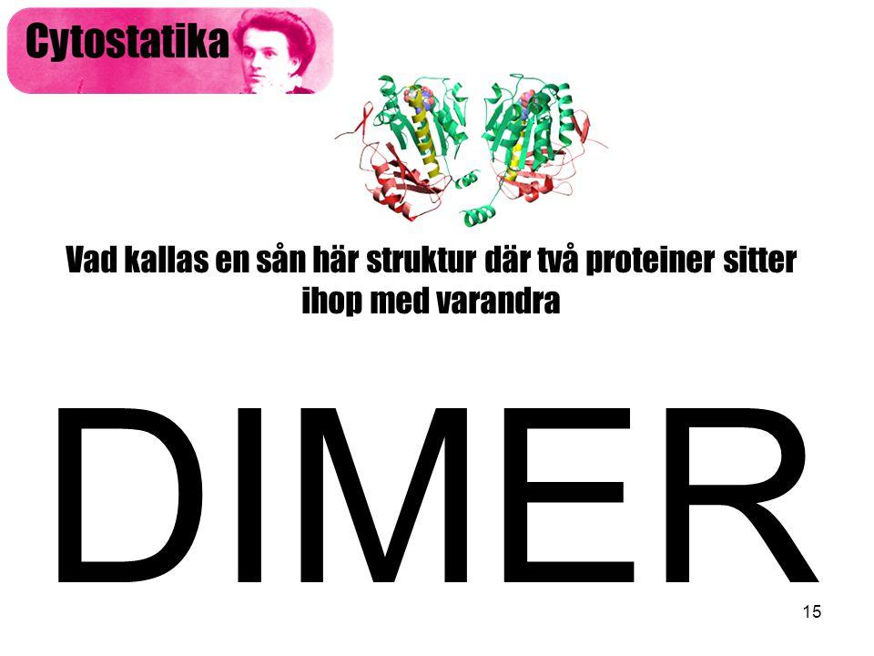 15 Vad kallas en sån här struktur där två proteiner sitter ihop med varandra DIMER