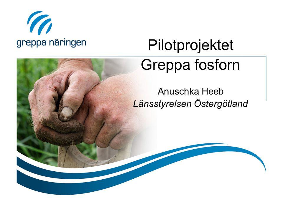 Pilotprojektet Greppa fosforn Anuschka Heeb Länsstyrelsen Östergötland