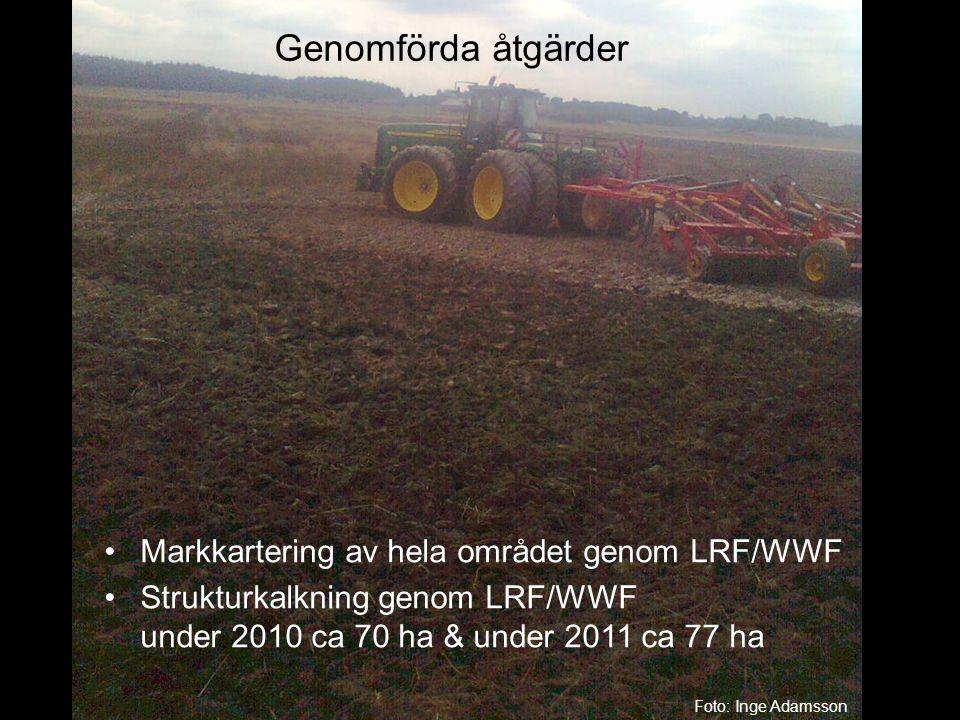 Genomförda åtgärder •Markkartering av hela området genom LRF/WWF •Strukturkalkning genom LRF/WWF under 2010 ca 70 ha & under 2011 ca 77 ha Foto: Inge