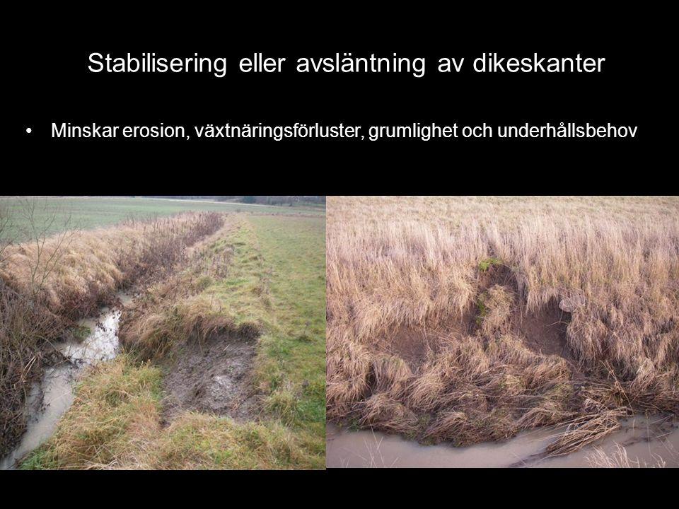 •Minskar erosion, växtnäringsförluster, grumlighet och underhållsbehov Stabilisering eller avsläntning av dikeskanter