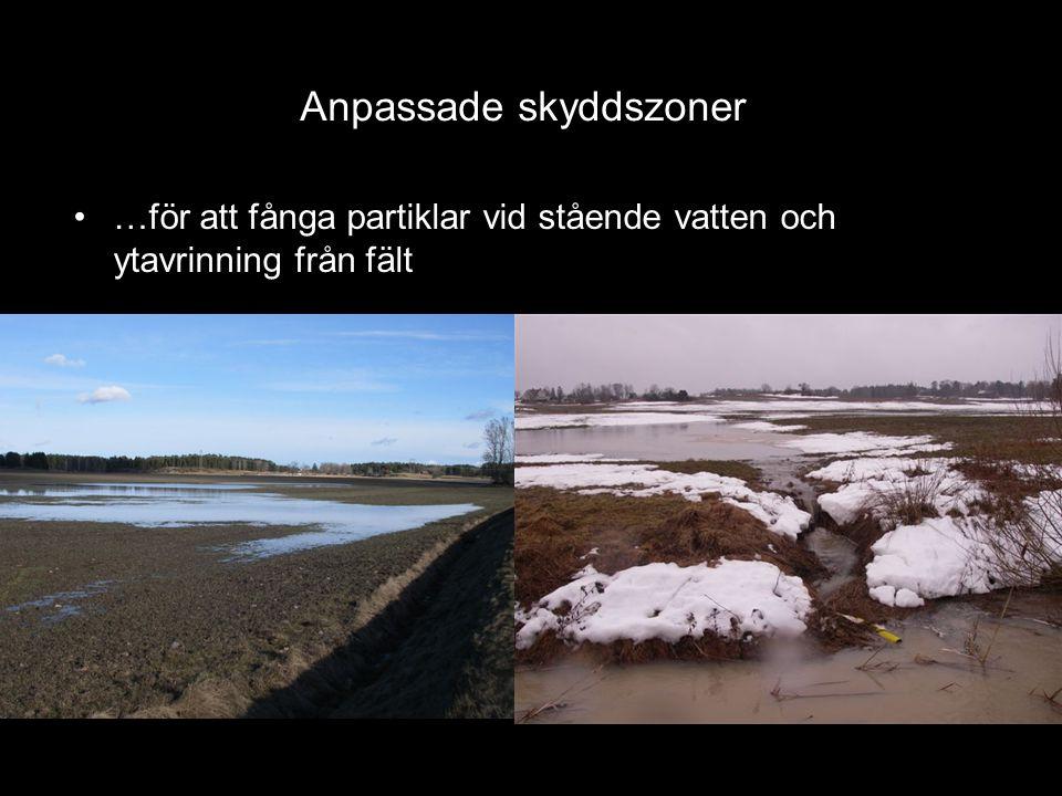 •Kostnad… - miljöersättning?! Anläggning av 2-stegs-diken •OBS Vattenverksamhet - juridik?!