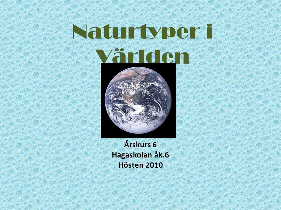 Naturtyper i Världen Årskurs 6 Hagaskolan åk.6 Hösten 2010