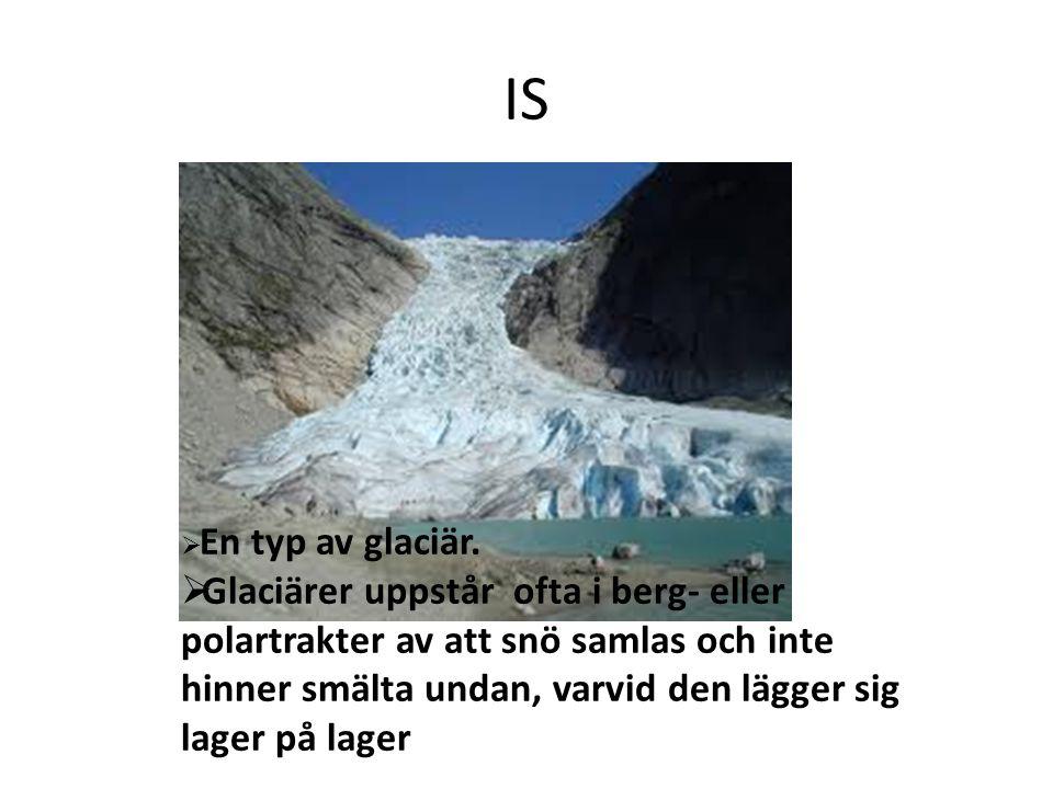 IS  En typ av glaciär.