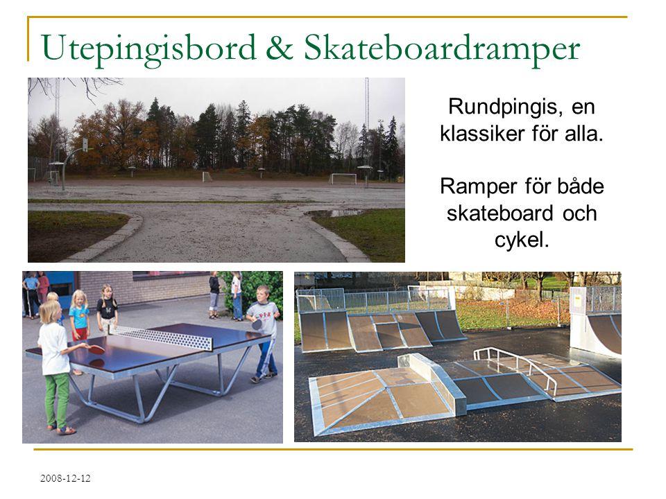 2008-12-12 Utepingisbord & Skateboardramper Rundpingis, en klassiker för alla. Ramper för både skateboard och cykel.