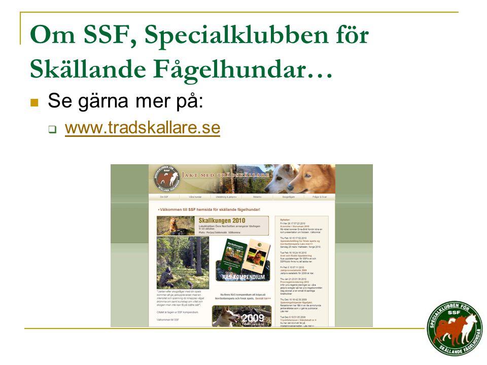 Om SSF, Specialklubben för Skällande Fågelhundar…  Se gärna mer på:  www.tradskallare.se www.tradskallare.se