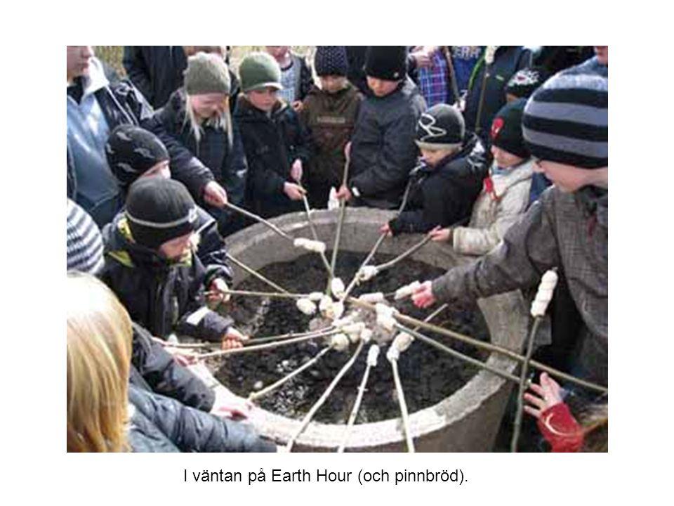 I väntan på Earth Hour (och pinnbröd).