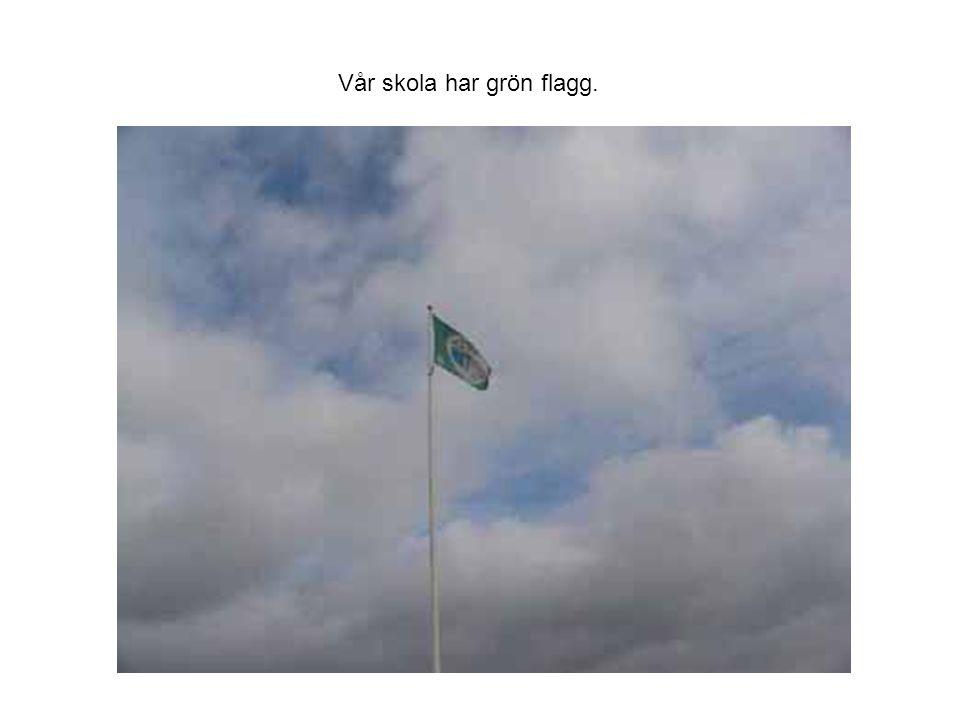 Vår skola har grön flagg.