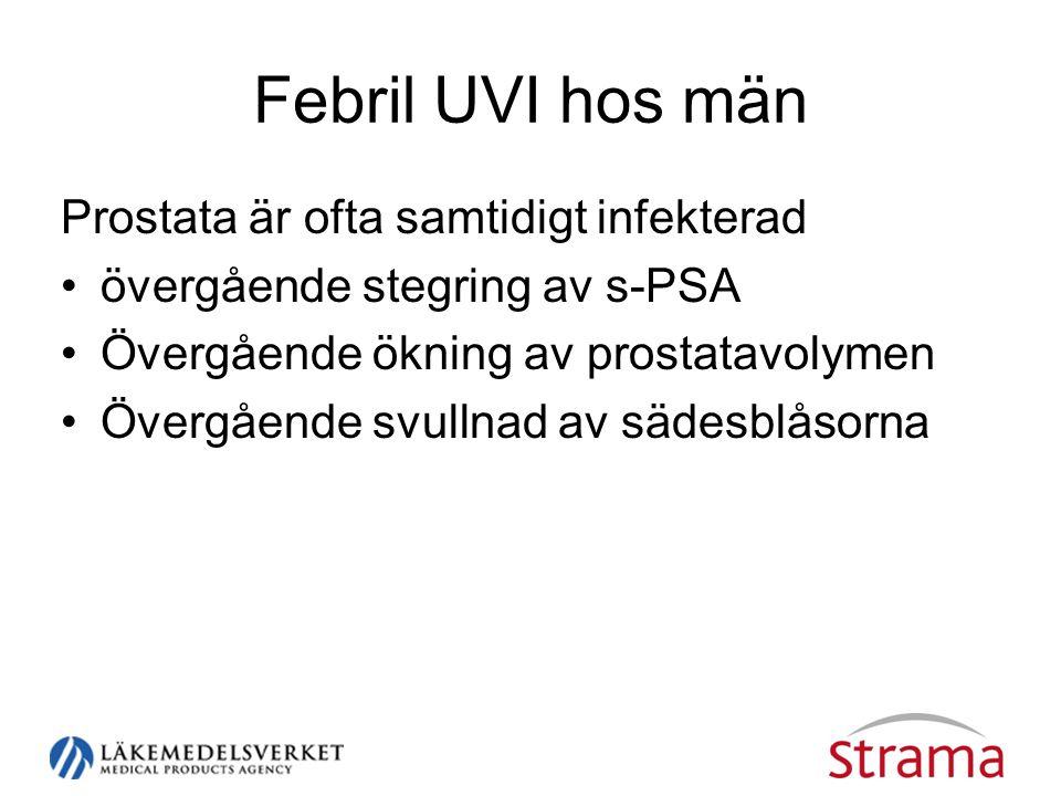 Febril UVI hos män Prostata är ofta samtidigt infekterad •övergående stegring av s-PSA •Övergående ökning av prostatavolymen •Övergående svullnad av sädesblåsorna