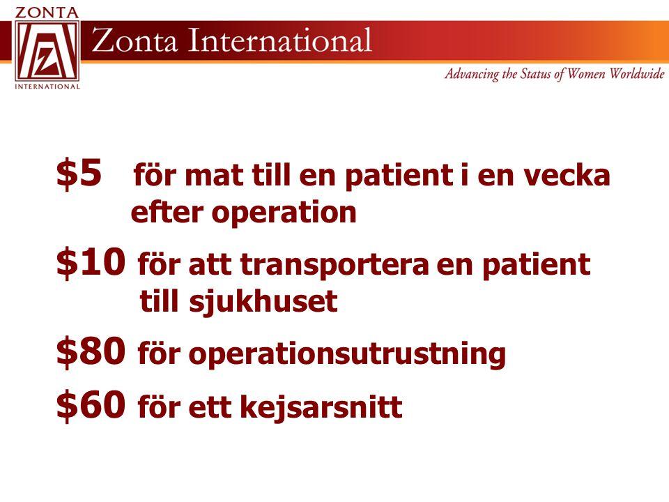 $5 för mat till en patient i en vecka efter operation $10 för att transportera en patient till sjukhuset $80 för operationsutrustning $60 för ett kejs