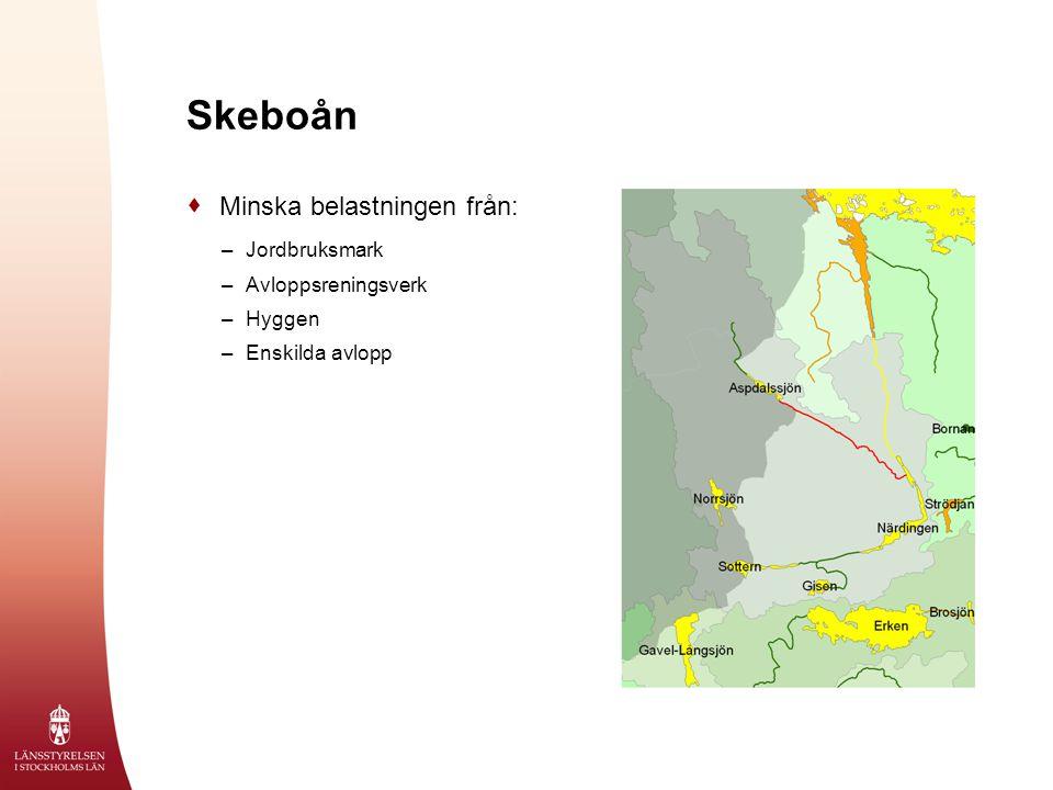 Skeboån  Minska belastningen från: –Jordbruksmark –Avloppsreningsverk –Hyggen –Enskilda avlopp