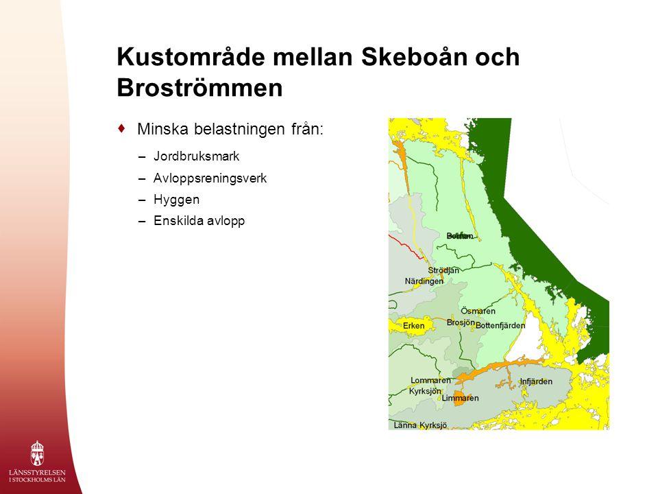 Kustområde mellan Skeboån och Broströmmen  Minska belastningen från: –Jordbruksmark –Avloppsreningsverk –Hyggen –Enskilda avlopp