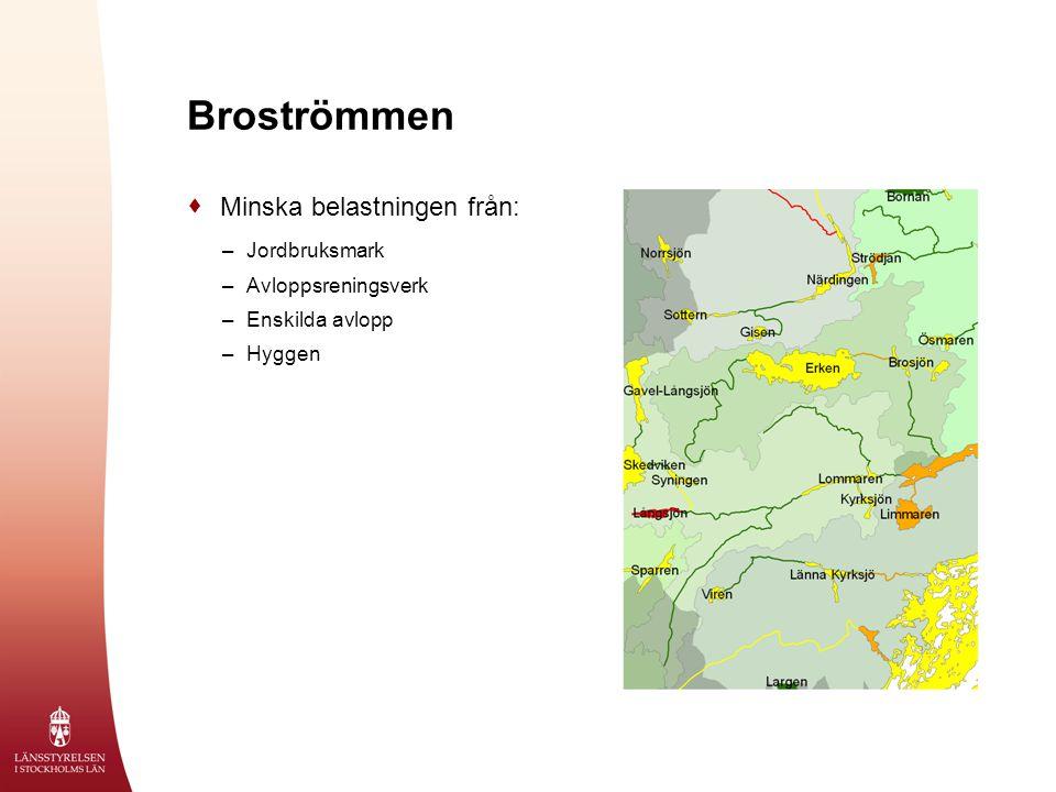 Broströmmen  Minska belastningen från: –Jordbruksmark –Avloppsreningsverk –Enskilda avlopp –Hyggen
