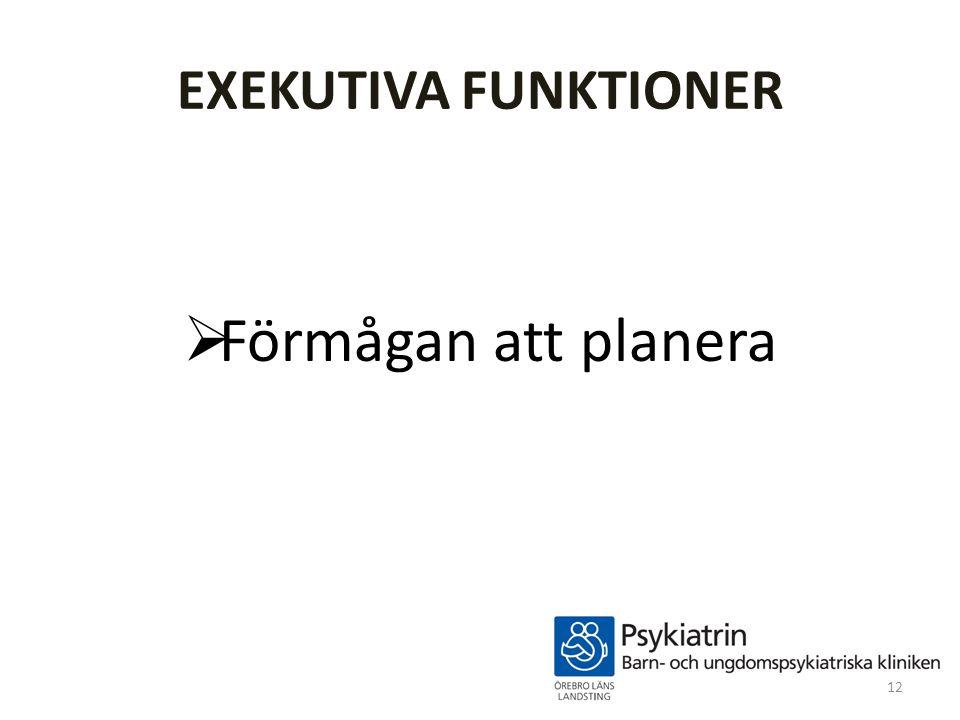 EXEKUTIVA FUNKTIONER  Förmågan att planera 12