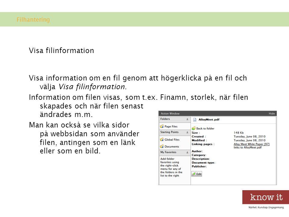 Visa filinformation Visa information om en fil genom att högerklicka på en fil och välja Visa filinformation.