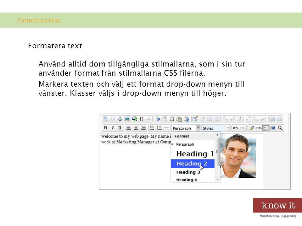Använd alltid dom tillgängliga stilmallarna, som i sin tur använder format från stilmallarna CSS filerna.