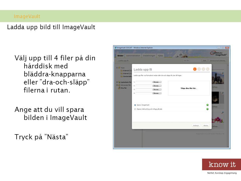 Ladda upp bild till ImageVault Välj upp till 4 filer på din hårddisk med bläddra-knapparna eller dra-och-släpp filerna i rutan.