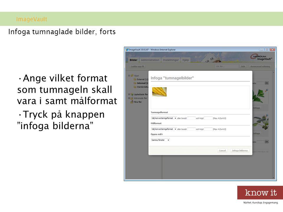 Infoga tumnaglade bilder, forts •Ange vilket format som tumnageln skall vara i samt målformat •Tryck på knappen infoga bilderna ImageVault