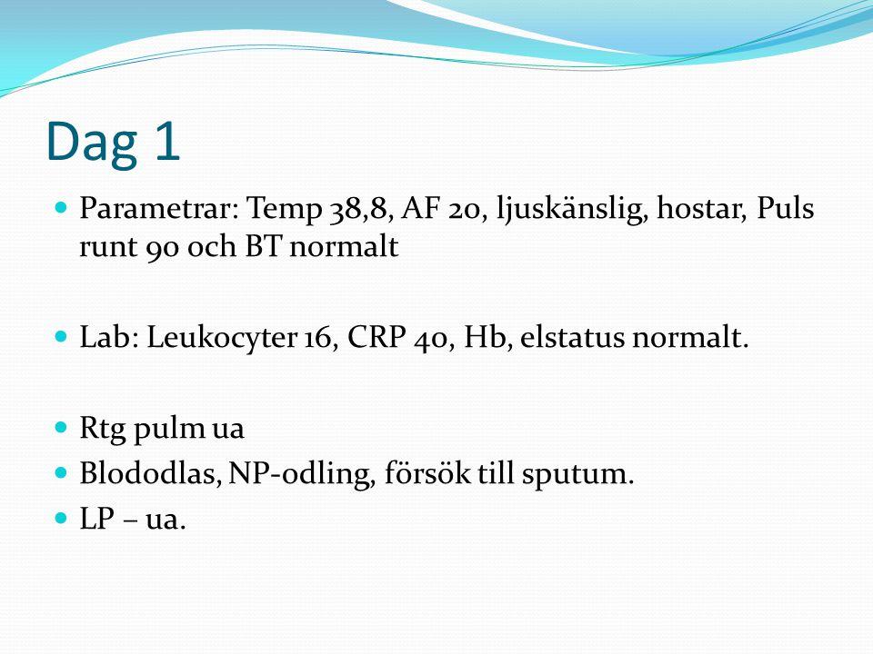 Dag 1  Parametrar: Temp 38,8, AF 20, ljuskänslig, hostar, Puls runt 90 och BT normalt  Lab: Leukocyter 16, CRP 40, Hb, elstatus normalt.