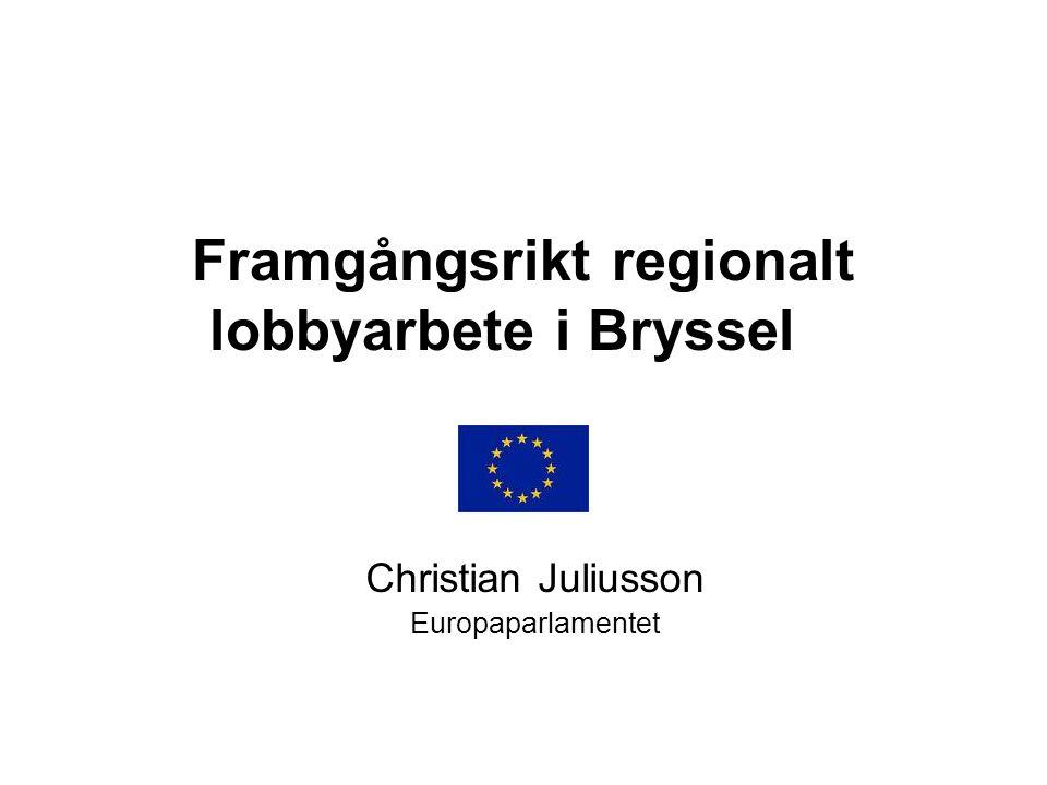 Framgångsrikt regionalt lobbyarbete i Bryssel Christian Juliusson Europaparlamentet