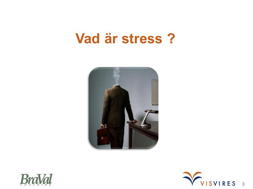 Vad är stress ? 3
