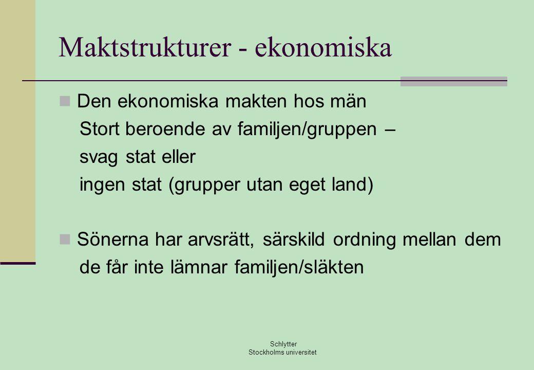 Maktstrukturer - ekonomiska  Den ekonomiska makten hos män Stort beroende av familjen/gruppen – svag stat eller ingen stat (grupper utan eget land) 