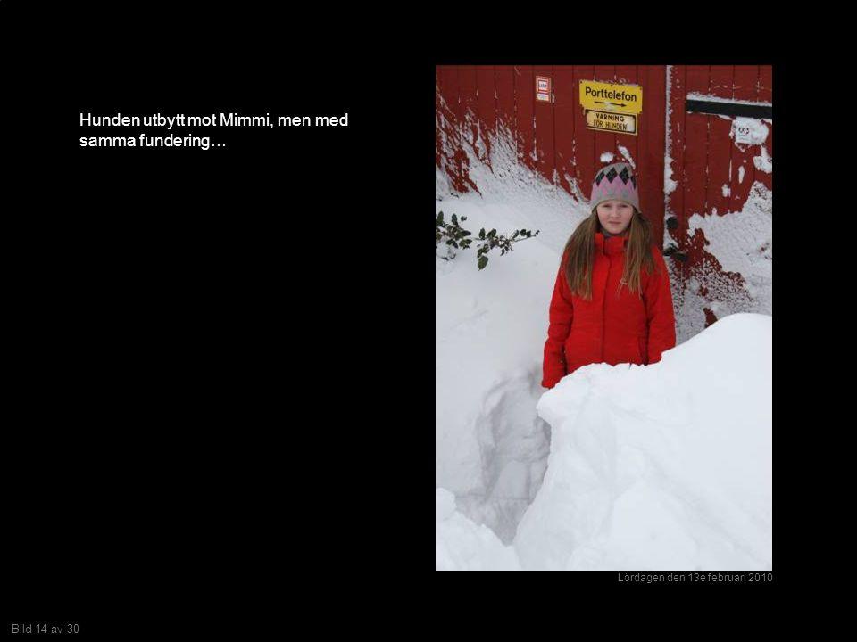 Bild 14 av 30 Hunden utbytt mot Mimmi, men med samma fundering… Lördagen den 13e februari 2010