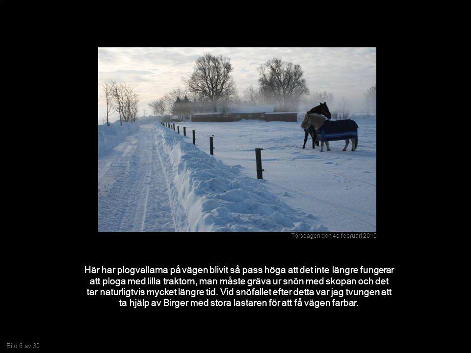 Bild 6 av 30 Här har plogvallarna på vägen blivit så pass höga att det inte längre fungerar att ploga med lilla traktorn, man måste gräva ur snön med skopan och det tar naturligtvis mycket längre tid.