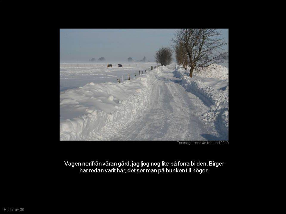 Bild 7 av 30 Vägen nerifrån våran gård, jag ljög nog lite på förra bilden, Birger har redan varit här, det ser man på bunken till höger.