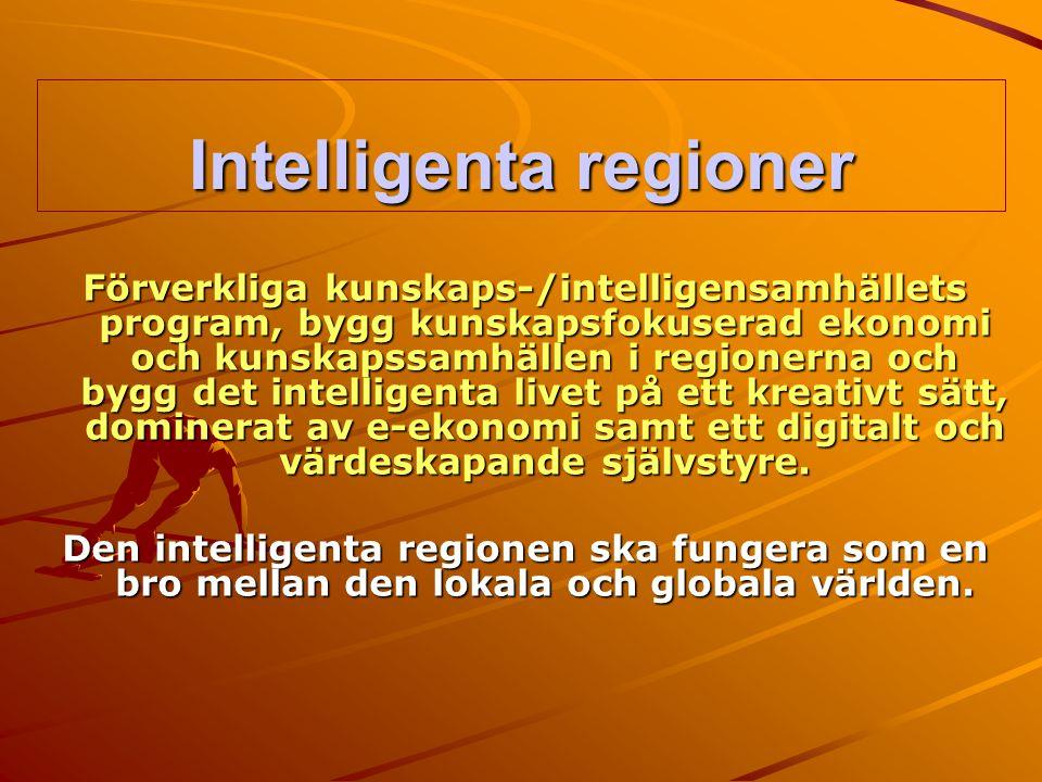 Intelligenta regioner Förverkliga kunskaps-/intelligensamhällets program, bygg kunskapsfokuserad ekonomi och kunskapssamhällen i regionerna och bygg d