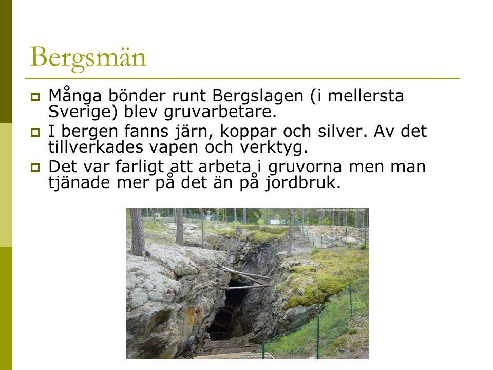 Bergsmän  Många bönder runt Bergslagen (i mellersta Sverige) blev gruvarbetare.  I bergen fanns järn, koppar och silver. Av det tillverkades vapen o
