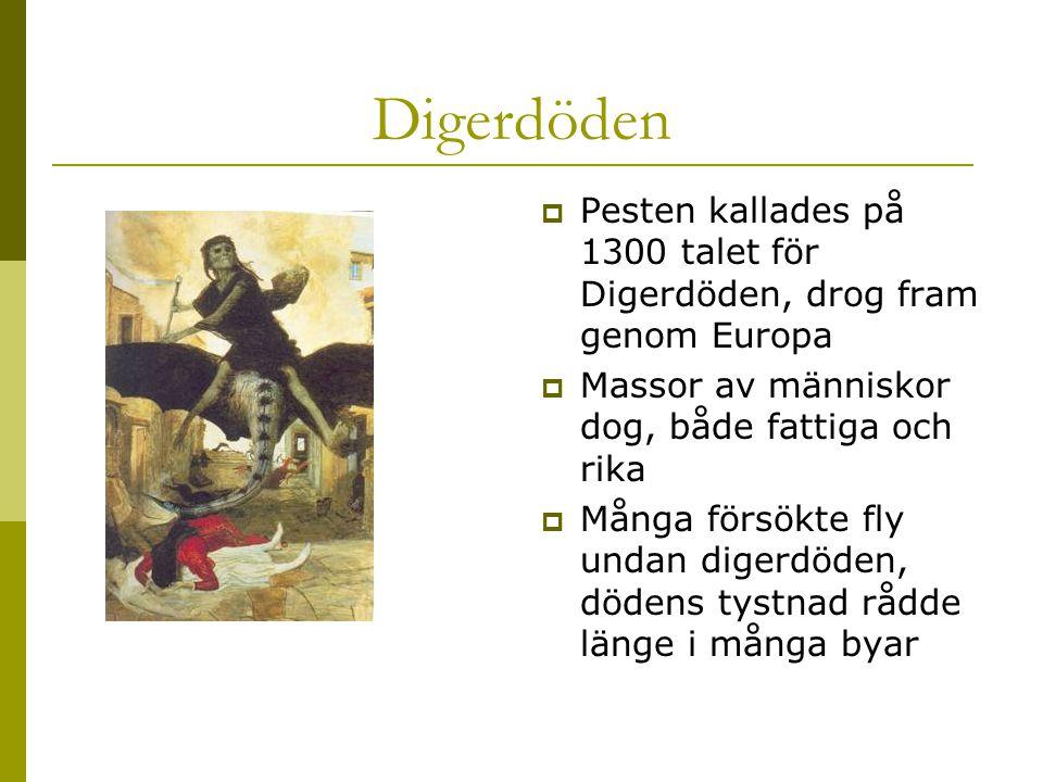 Digerdöden  Pesten kallades på 1300 talet för Digerdöden, drog fram genom Europa  Massor av människor dog, både fattiga och rika  Många försökte fly undan digerdöden, dödens tystnad rådde länge i många byar