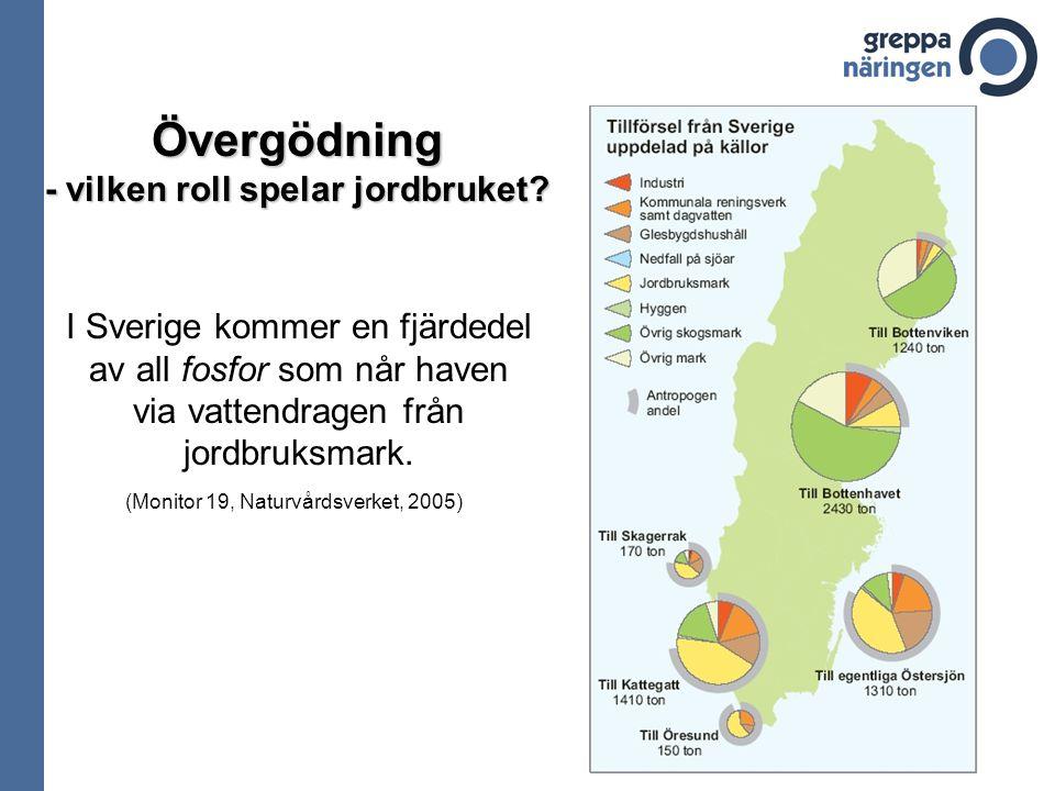 I Sverige kommer en fjärdedel av all fosfor som når haven via vattendragen från jordbruksmark. Övergödning - vilken roll spelar jordbruket? (Monitor 1