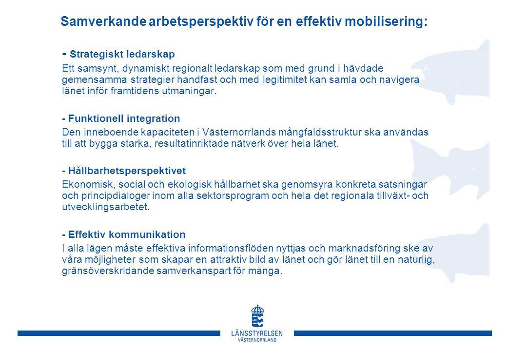 Samverkande arbetsperspektiv för en effektiv mobilisering: - Strategiskt ledarskap Ett samsynt, dynamiskt regionalt ledarskap som med grund i hävdade