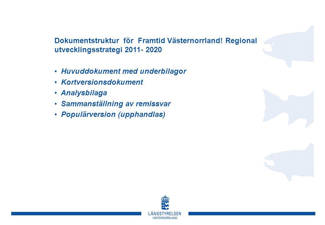 Utvecklingsstrategins syfte: Formulera och ange vägar att nå länets regionala utvecklings- och tillväxtmål Uppgift:  Är länets långsiktiga, visionära och övergripande inriktningsdokument för att nå de regionala utvecklingsmålen  Ska vara vägledande för tolkning och revidering av olika regionala sektorsprogram och strategier, för nationella myndigheters prioriteringar, för utformning av regionala EU-program, för dialoger kring kommunala utvecklings- och översiktsplaner och för utvecklingsinitiativ därutöver  Är en brygga mellan EU:s/statens direktiv och regionalt och lokalt utvecklingsarbete  Är gemensamt, strategiskt underlag för det regionala och lokala utvecklingsarbetet i länet