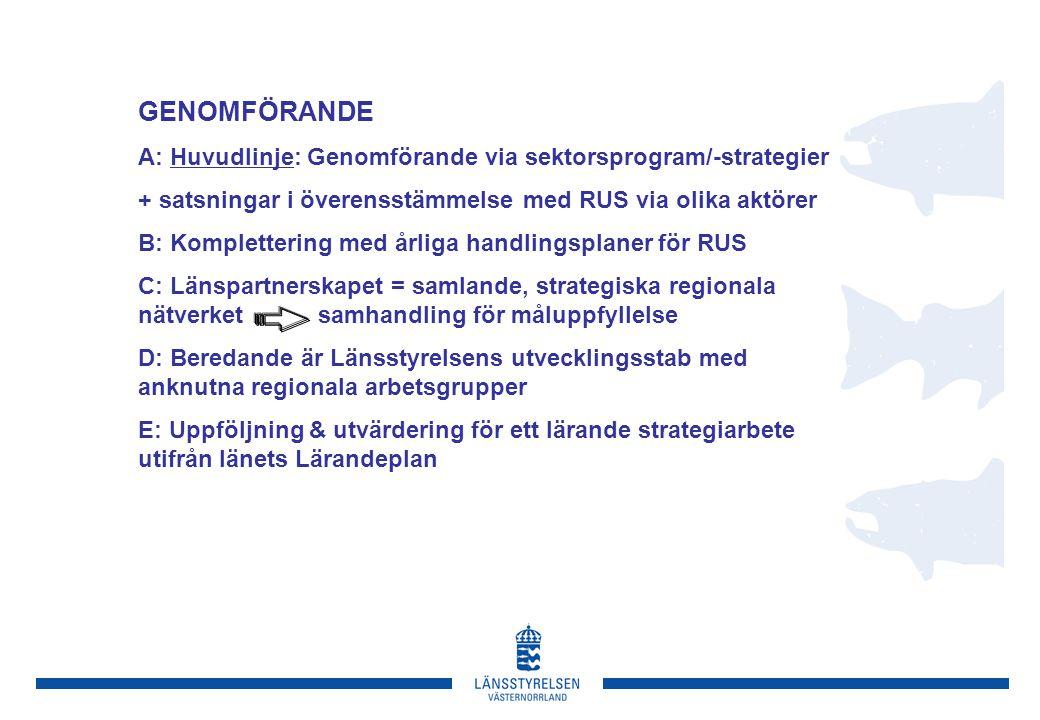 GENOMFÖRANDE A: Huvudlinje: Genomförande via sektorsprogram/-strategier + satsningar i överensstämmelse med RUS via olika aktörer B: Komplettering med