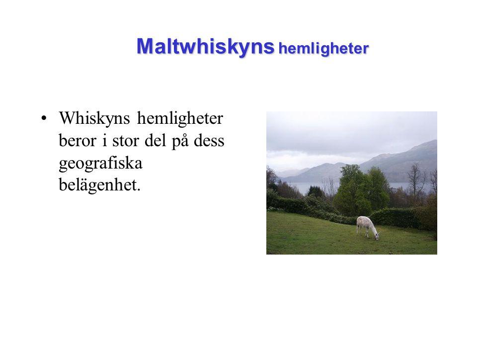 Maltwhiskyns hemligheter