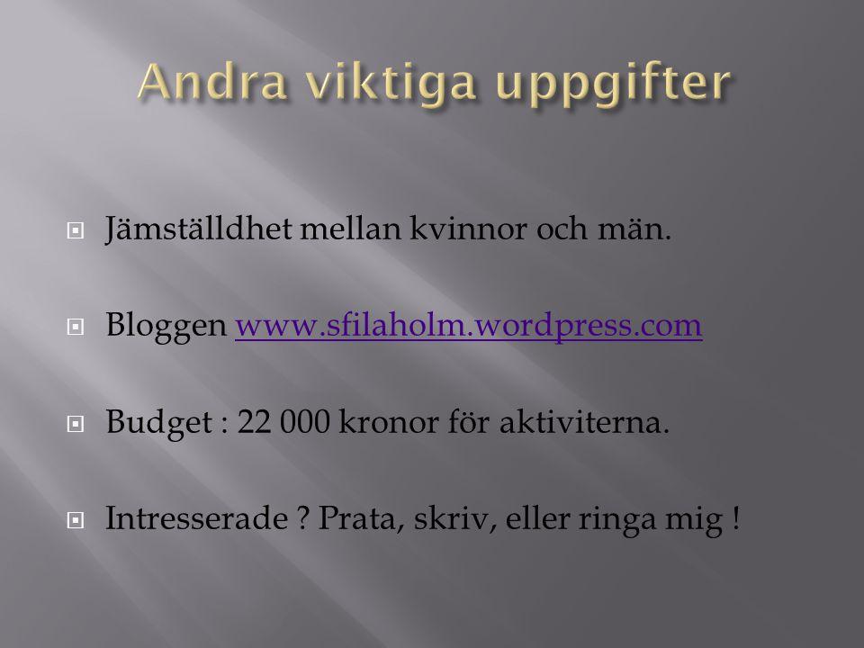 Jämställdhet mellan kvinnor och män.  Bloggen www.sfilaholm.wordpress.comwww.sfilaholm.wordpress.com  Budget : 22 000 kronor för aktiviterna.  In