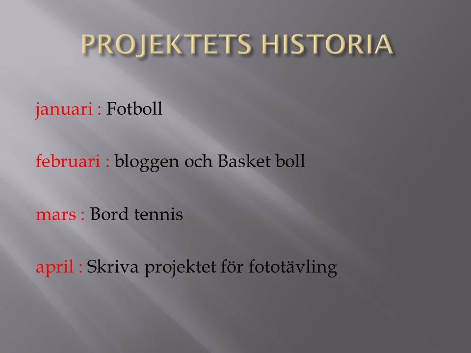 januari : Fotboll februari : bloggen och Basket boll mars : Bord tennis april : Skriva projektet för fototävling