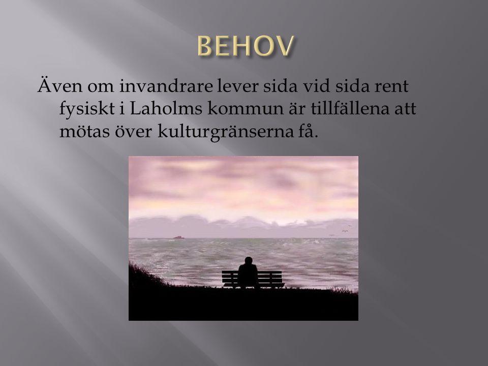 Invandrare och svenskfödda kan mötas kring gemensamma intressen och lära känna varandra.