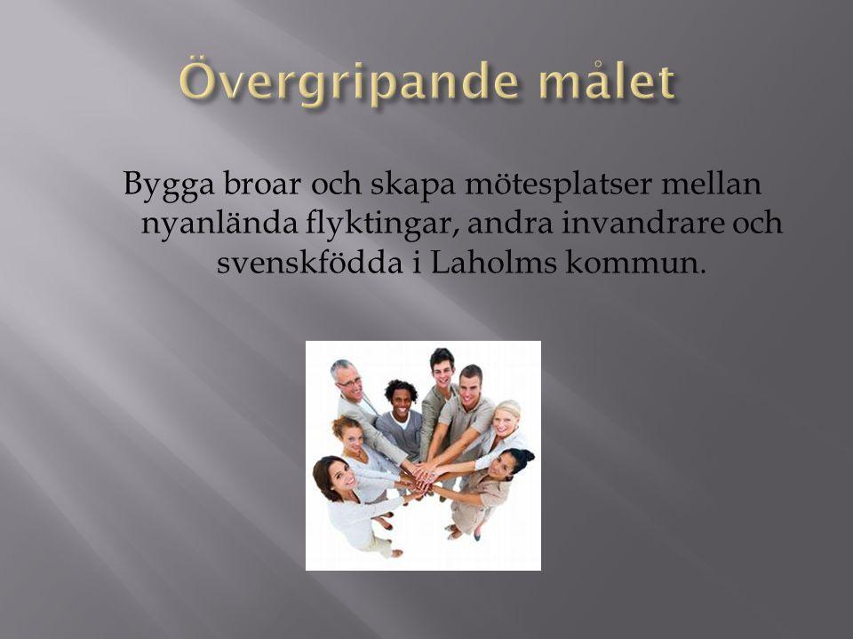 Starta upp och etablera en förening i Laholm som drivs av medlemmarna själva.