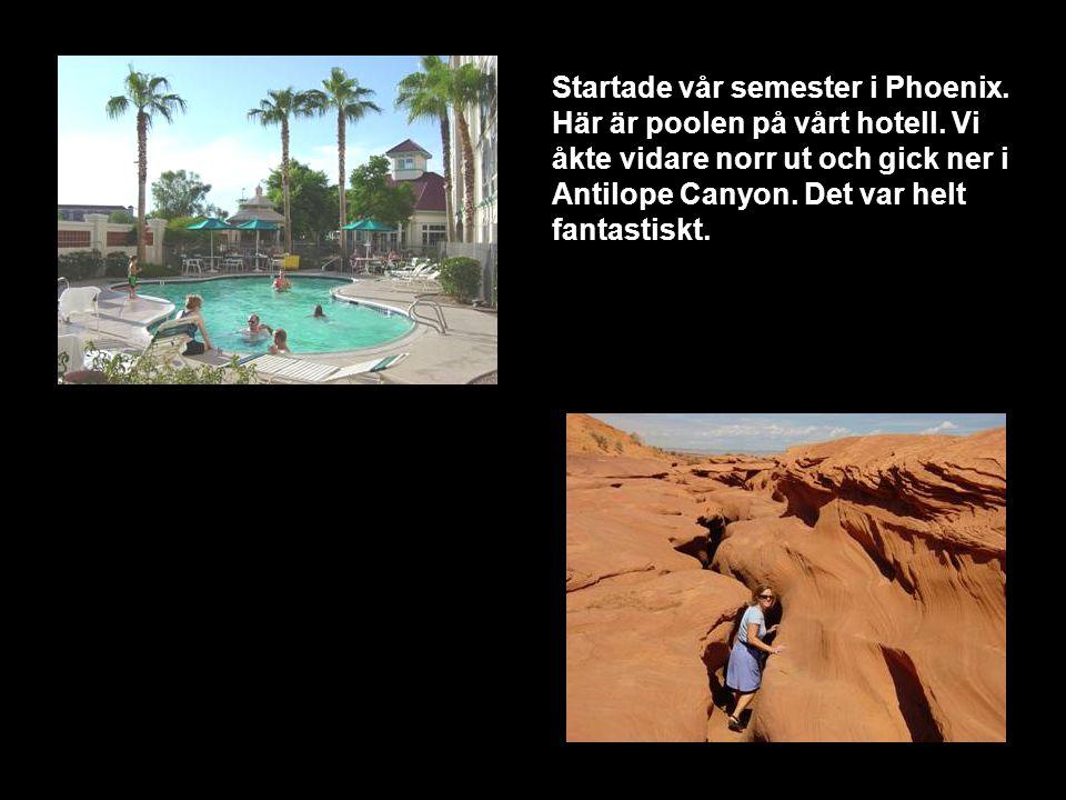 Startade vår semester i Phoenix. Här är poolen på vårt hotell.