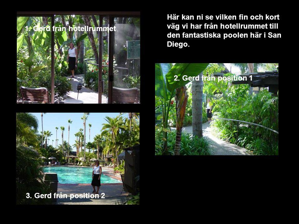 1. Gerd från hotellrummet Här kan ni se vilken fin och kort väg vi har från hotellrummet till den fantastiska poolen här i San Diego. 2. Gerd från pos